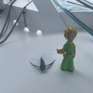 The Little Prince travels aboard the boat Apivia
